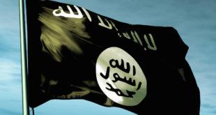 Џихадисти увелико говоре о Балканском калифату, али још немају миг за терористичке нападе 11