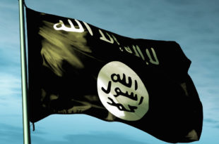 Џихадисти увелико говоре о Балканском калифату, али још немају миг за терористичке нападе 8