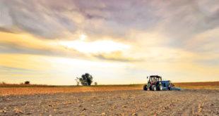 Акционари: Пљачкашка приватизација појела 200.000 хектара обрадиве земље 7