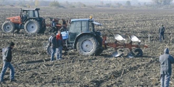 """Радници: """"Телима ћемо бранити даљу продају земљишта ПKБ-а"""" 1"""