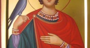 Празник вина и љубави: Данас је Свети Трифун, ваљало би да урадите ово! 2