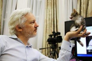 WikiLeaks објављује више тајних докумената америчке шпијунаже него што је открио Сноуден