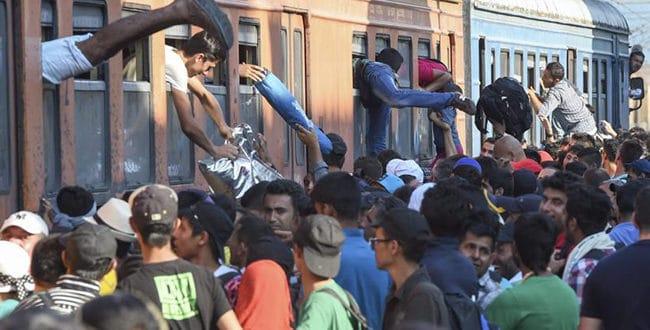 Србија без решења ако имигранти-муслимани почну да се концентришу у Санџаку