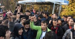 Декларација против градње кућа за мигранте у Суботици 12