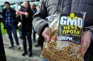 Идемо на референдум о ГМО?