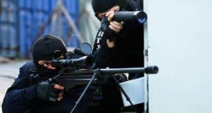 Шиптарски терористички олош јавно понижава Србију а ти се Вулине са газдом кревељиш као луд на брашно 3