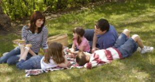 Закон о финансијској подршци породици с децом штити државу а не породице
