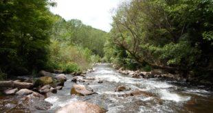 Општина Димитровград против МХЕ, желе да сачувају Стару планину и резерват Јерма 12