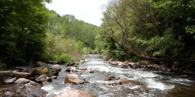 Општина Димитровград против МХЕ, желе да сачувају Стару планину и резерват Јерма