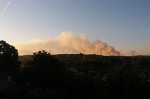 Ево напредни сомови и депонија у Винчи НЕ ГОРИ, само дими!