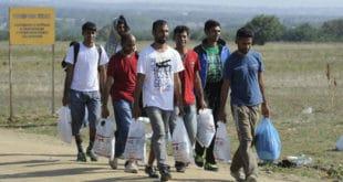 Савет Европе: Дајте мигрантима право гласа, држављантво, сигуран посао…
