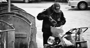 Стижу чувари контејнера у Новом Саду 7