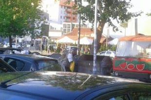 Сиротињо цркни! Нови Сад добија чуваре контејнера! 4