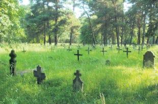 А да ви Немци есхумирате ваше СС убице из Крагујевца, кости пренесете у Немачку и тамо им подижете шта хоћете?
