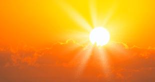 У Француској пет жртава врућина, у Холандији рекордних – 40,4 степена 11