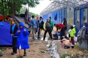 БЕОГРАД НА НОГАМА: У Земуну се гради велики мигрантски камп!?