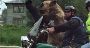 А у међувремену у Русији... (видео) 7