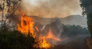 Пожари и даље букте широм Црне Горе (видео)
