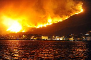 Црна Гора: Четири дана борбе с пожарима и једна порука за премијера (видео)