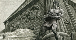 Београдске Аугијеве штале пуне гована па смрди читав град 3
