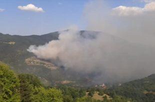 Пожар код Студенице, гори десет хектара шуме