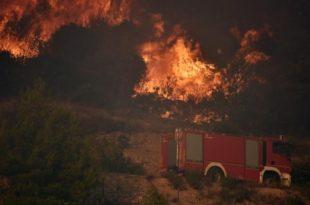 ПОЖАР У КОШТУНИЋИМА: Ватра под контролом али опасност није потпуно прошла