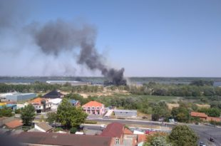 Београд: Нови пожар у фабрици картона на Ади Хуји, повређен ватрогасац