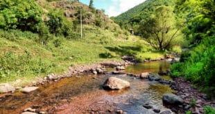 Вучићев режим под хипотеку ставио Ракитску реку која је део заштићеног Националног парка Старе Планине 1