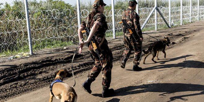 Аустрија шаље додатне полицајце на границу Мађарске са Србијом