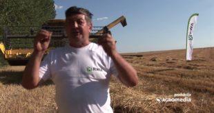 Зашто чак и велики ратари одустају од гајења пшенице (видео) 10