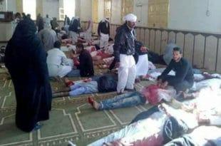 МАСАКР У ЕГИПТУ: Терористи побили 184 људи на молитви (видео) 3