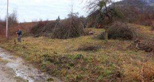 У Куршумлији уништавају плантаже малина и купина