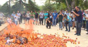 Шпански сељаци у знак протеста спалили ЕУ заставе (видео) 11