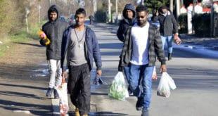 ОСТАЈУ ЗАУВЕK: У Обреновцу нови камп за мигранте од 289.000 евра! 275 станова и најаве о запошљавању! 4
