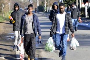 НВО БИЗНИС: Норвешка влада финансира пројекте масовне миграције у Србију