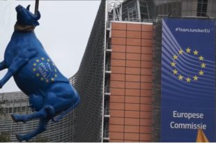 Сељаци у Бриселу обесили ЕУ теле и сукобили се са полицијом (видео)