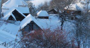 НЕВРЕМЕ НА ЗЛАТАРУ: Олујни ветар рушио бандере и дрвеће, села без струје и воде 14