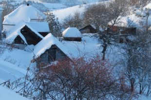 НЕВРЕМЕ НА ЗЛАТАРУ: Олујни ветар рушио бандере и дрвеће, села без струје и воде