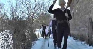"""""""Побратим вук"""" у селу Бољевац код Рибарске Бање (видео) 2"""