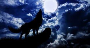 """НАСА: Небо ће 1. јануара обасјати и """"вучји Месец"""""""