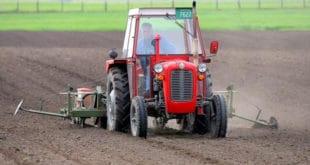 Може ли Србија да преживи ликвидацију пољопривреде?