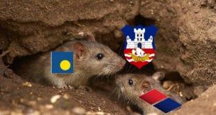 ДС и СНС од 2008. до данас у Београду направили 2.364.000.000 евра штете! 4