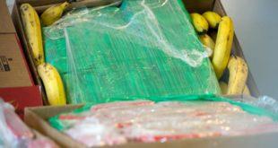 Албанија: Са бананама из Колумбије стогло и 613 кг кокаина 5