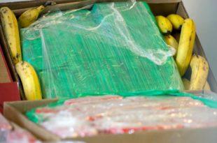 Албанија: Са бананама из Колумбије стогло и 613 кг кокаина