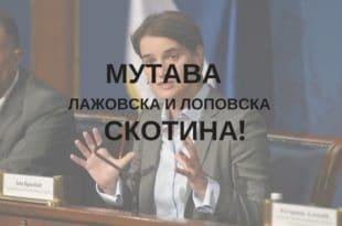 """Портал """"Бебац"""": Ана Брнабић обмањује родитеље, ПДВ на опрему за бебе се не враћа 9"""