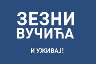 Зезни Вучића и уживај, гласај по савести! (видео) 9