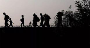 BND: Кријумчари миграната на Балканској рути зарађују 120 милиона евра месечно 19