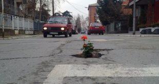 Кладовљанима дојадиле уличне рупе па у њих засадили цвеће 2