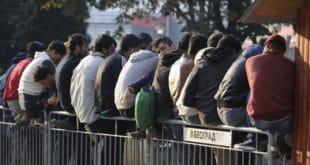 Мигранти у центру Београда покушали отмицу девојке српске националности 12