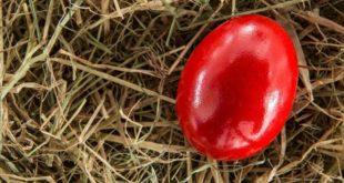 Прво јаје обавезно офарбајте у црвено! Шта је чуваркућа и шта радимо са оном од прошле године